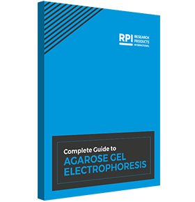 <br>Download the  Complete Guide  to Agarose Gel  Electrophoresis